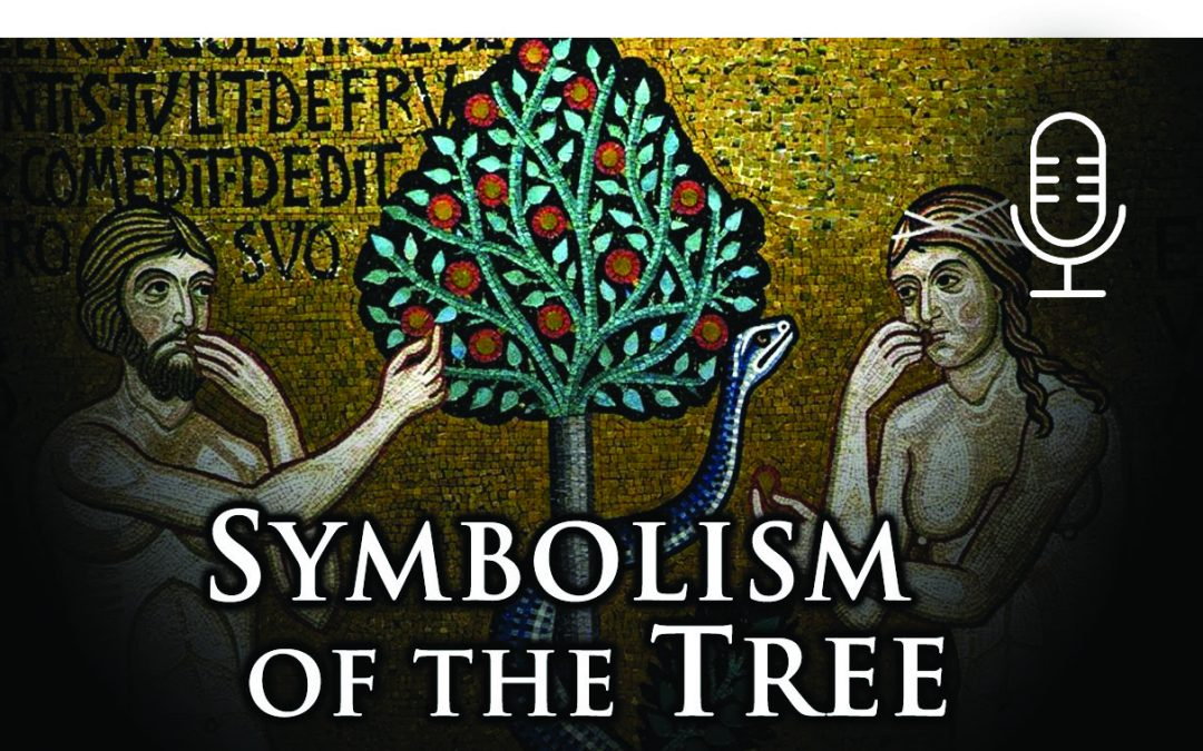 The Symbolism of the Tree
