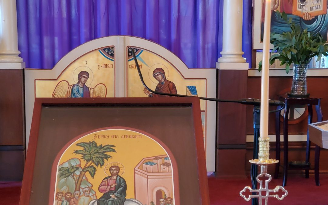 I Went to Church Today – Palm Sunday  (IWTCT-3 April 12,2020)