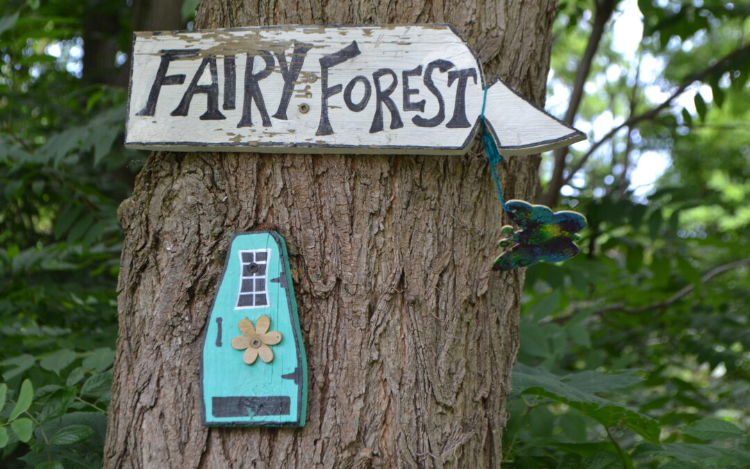 On the Fairy Forest